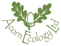 Acorn Ecology Training Exeter