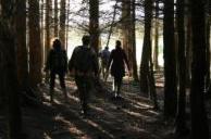 Acorn Ecology Training Courses, ecology training