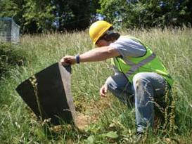 ecology training, development sites, ecology courses