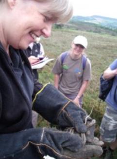 Sue Searle, adder, Acorn Ecology, Ecology Training