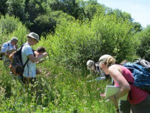 botany course