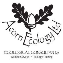 Acorn Ecology Logo