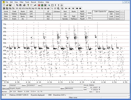 Bat Sound Analysis
